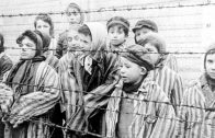 from-the-eyes-of-a-child-holocaust-survivor-describes-her-first-day-in-the-concentration-camp