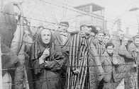new-while-jews-were-being-slaughtered-in-the-holocaust-the-world-knew-remained-silent